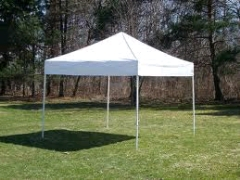 Where to rent 10X10 FRAME REG. TOP TENT  NEW   4 in Spartanburg SC