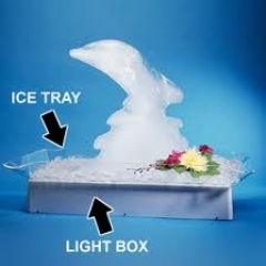 Where to rent ICE SCUPTURE ACRYLIC TRAY in Spartanburg SC