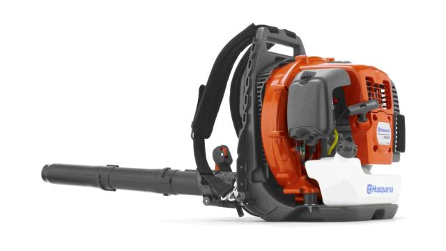 Where to find LEAF BLOWER, BACKPACK - LARGE in Spartanburg
