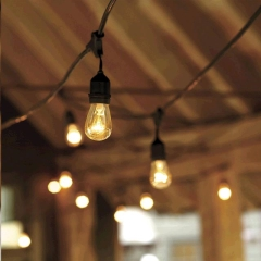 Where to rent CAFE LIGHTS   EDISON LIGHTS  PER FT. in Spartanburg SC